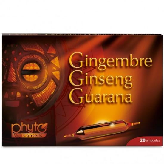 Gingembre Ginseng Guarana...